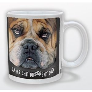 Same Sh*t Different Day Novelty Mug